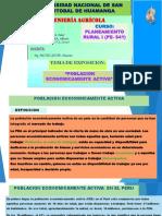 exposicion de poblacion economicamente activa.pdf
