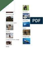 Animales Extintos y Peligros de Extincion y 10 Lugares Turisticos de Guatemala