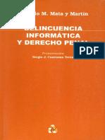 Delicuencia Informatica y Derecho Penal
