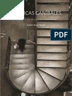 ESTÉTICAS CANÍBALES. Del Ethos Barroco Al Ethos Caníbal, Vol. III Corregido