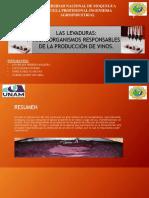 Exposicion de Levaduras