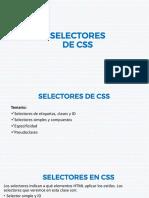 Selectores CSS3