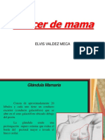 Cancer de Mama Elvis [Autoguardado]