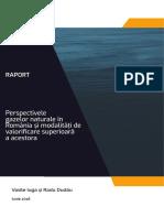 Perspectivele gazelor naturale în România și modalități de valorificare superioară a acestora
