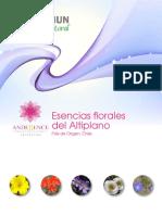 12 Archivo Altiplano