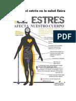 9.5.- Efectos Del Estrés