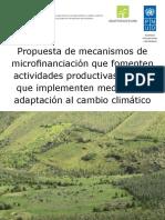 Medidas de Microfinanciación