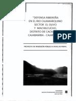 E-PERFIL AMC 33 EL OLIVO.pdf