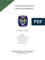 INGENHOUSZ.docx
