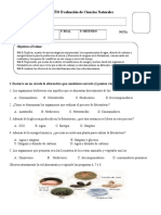 6° AÑO Prueba Ciencias Naturales.doc