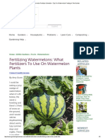 Watermelon Fertilizer Schedule – Tips for Watermelon Feeding in the Garden