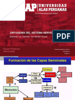 1b. Ontogenia Del Snc PDF