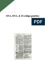 2-DNA-RNA-.pdf