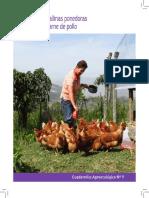 Cuadernillo No9 Producción de Gallinas Ponedoras