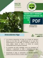 13.3experienciasdeimpactodesrrc Morelos (1)