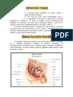 Biologia modulo4