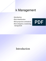 Pressman Ch 25 Risk Management