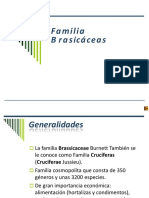Familia Brassicaeas, Liliacea, Rutacea, Rubiacea.