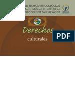 Bases Técnico-Metodológicas Para el informe de México al Protocolo de San Salvador