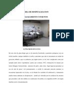 AREA-DE-HOSPITALIZACION-DE-TANIA-Y-BLANCA.docx