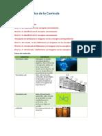 AP2_TEORIA Y PRACTICA DE LA CURRICULA (1).pdf