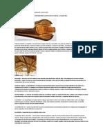 Ventajas Del Uso de Madera Como Material de Construcción