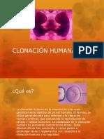 7. Clonación humana