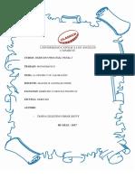 monografia procesal PRUEBA.docx