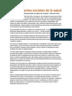 Determinantes Sociales de La Salud Resumen Final