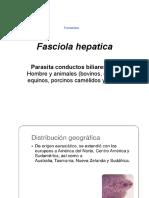 25. Tremátodos Fasciola hepatica, Paragonimus mejicanus