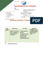 Plantas Nativas y Foràneas
