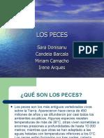 lospeces-110411101702-phpapp02