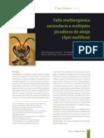04 Falla Multiorganica