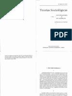 362805610-Braga-da-Cruz-Teorias-Sociologicas-os-fundadores-e-os-classicos-pdf.pdf
