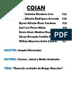 Cosan anteproyecto.docx