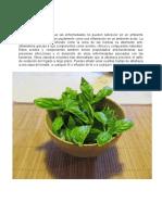 10 plantas medicinales    para que sirven.docx