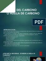 5.Ciclo Del Carbono