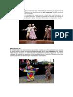 Bailes Tipicos Por Provincia