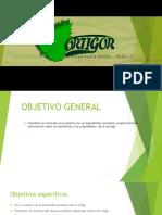 Dipositivas Del Ortigor
