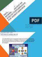 biorremediacionhidrocarburos-130214082253-phpapp02