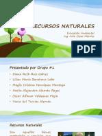 Presentación Recursos Naturales