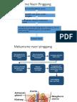 Patomekanisme Nyeri Pinggang
