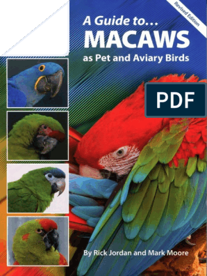A Guide To Macaws As Pet And Aviary Birds 2nd Revised Edition Parrot Birds,Beige Color Palette