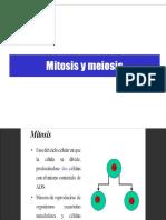 Meisosis y Mitosis
