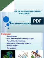 2. Arquitectura e Investigación en Proteinas