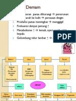 137567204-ppt-demam