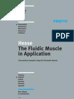 Pneumatic Muscle