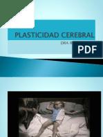 Plasticidad Cerebral (1)