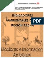 informe_indicadores
