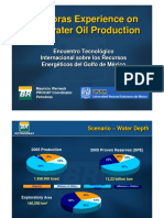 06 PETROBRAS Experience on Deepwater